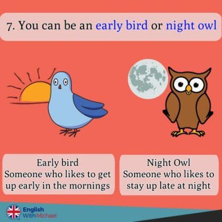 Night Owl Early Bird